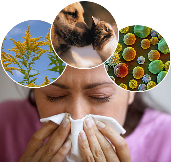 виды аллергии фото у взрослых